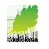 midlothian-web